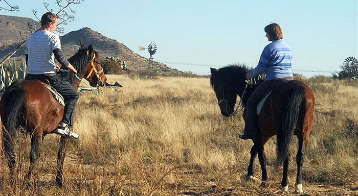 Karoo Horse Riding Trails