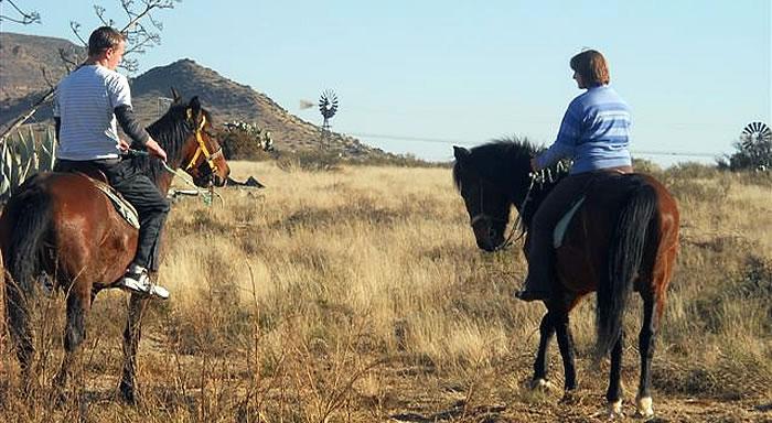 Karoo Horse Riding Trails